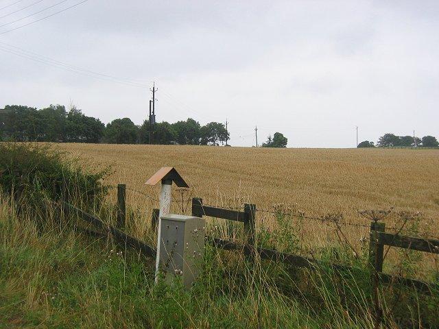 Pipeline, Westfields.