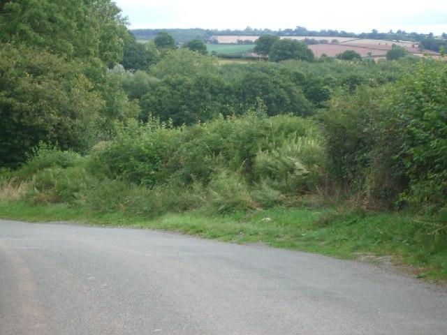 Lane near Little Froome Farm