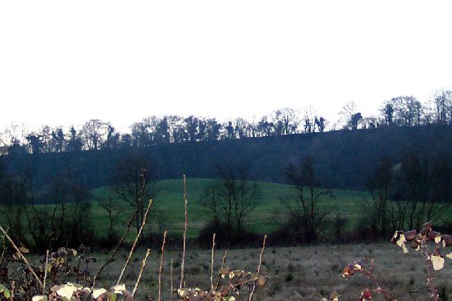 The landslip near Hawkley
