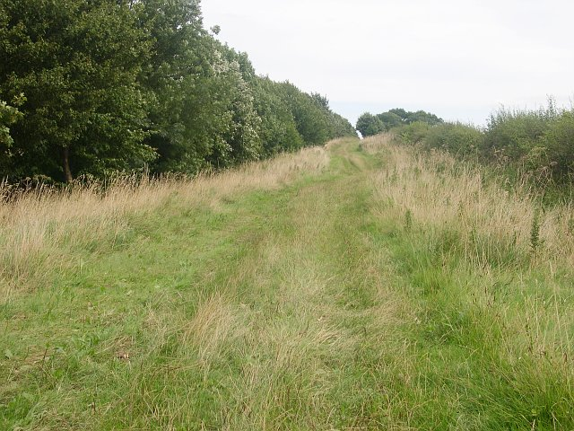 Bridleway following the course of a Roman road