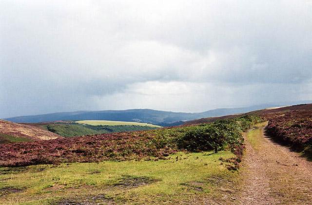 Porlock: Above Hawkcombe Head