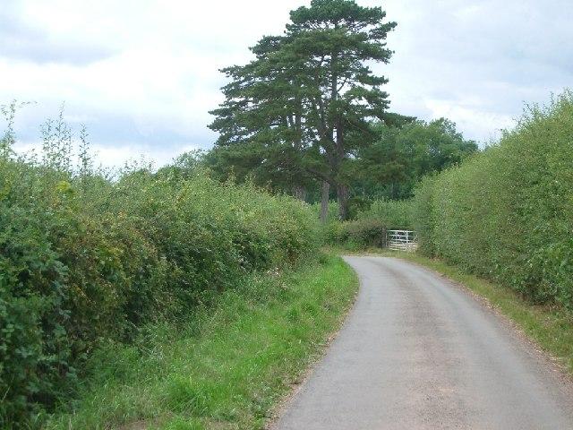 Lane near Stoke Lacy