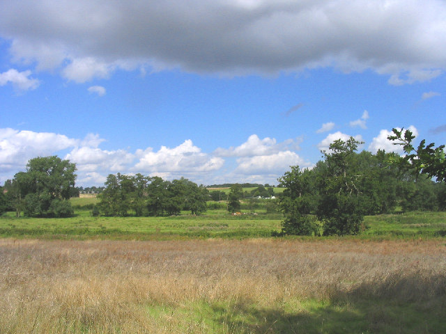Meadows near Bramfield, Suffolk