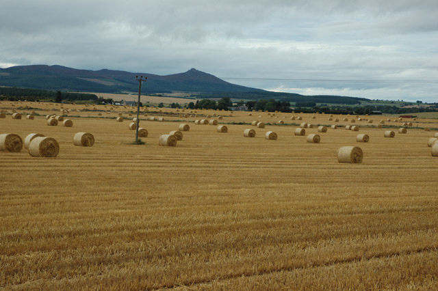 Farmland in early Autumn, Aberdeenshire