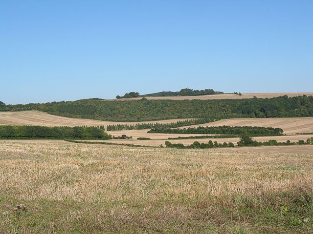 Valley between Deacon Hill and Fawley Down
