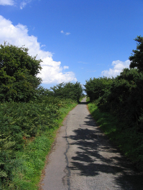 Old Railway line - Walberswick Common, Suffolk