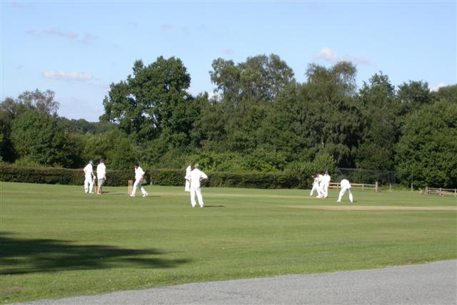 Ebernoe Cricket Pitch