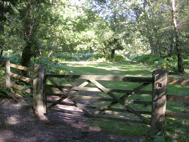 Gateway from Frame Heath Inclosure to Frame Wood, New Forest
