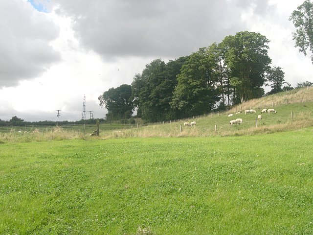 Pastureland below Fulletby