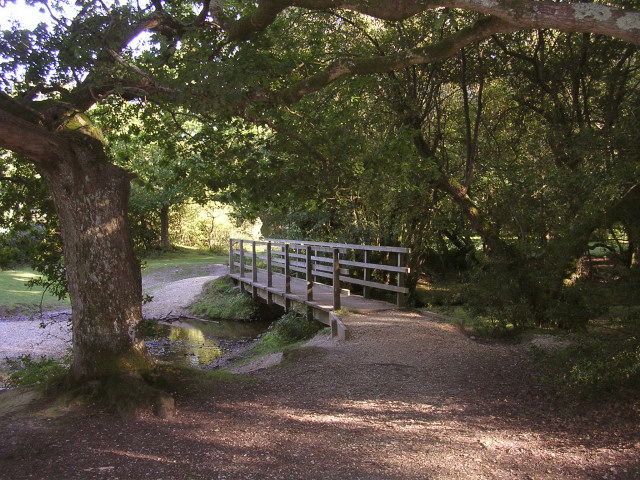 Footbridge north of Furzey Lodge, New Forest
