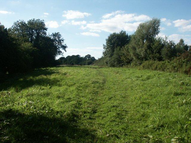Meadows, Hethel