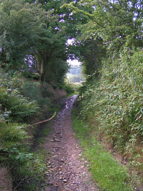 Byway between Chatterton Lane and Brook Bottom