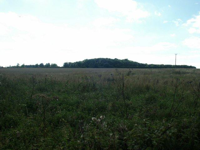 Hall Plantation, Bracon Ash