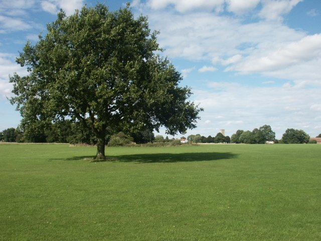 Mulbarton Common