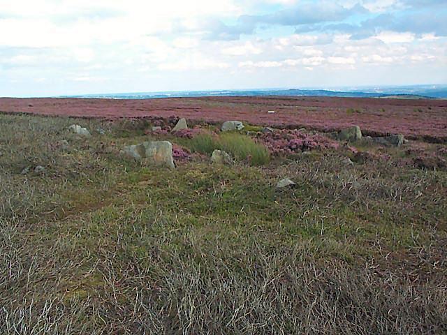 Grobstones Stone Circle, Burley Moor