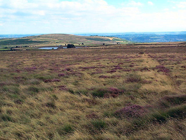 Weecher Brow, Hawksworth Moor