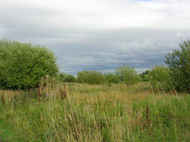 Brookhouse Community Woodland