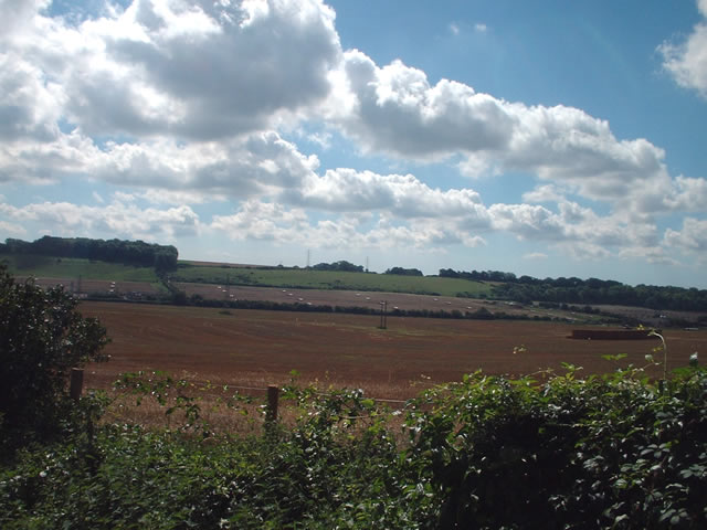Farmland south west of Oliver's Battery, Winchester