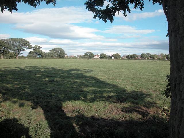 Saughall Pasture