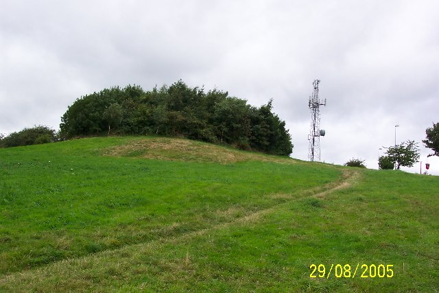 Darby's Hill