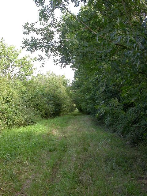 Morehay Lane