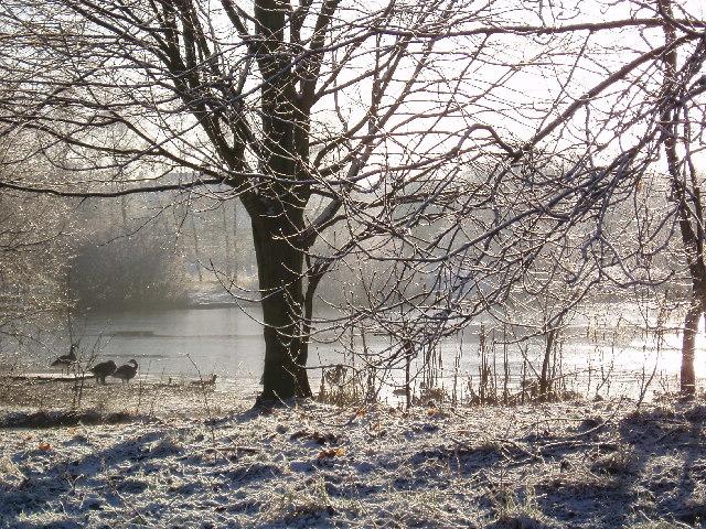 Duttons Pond