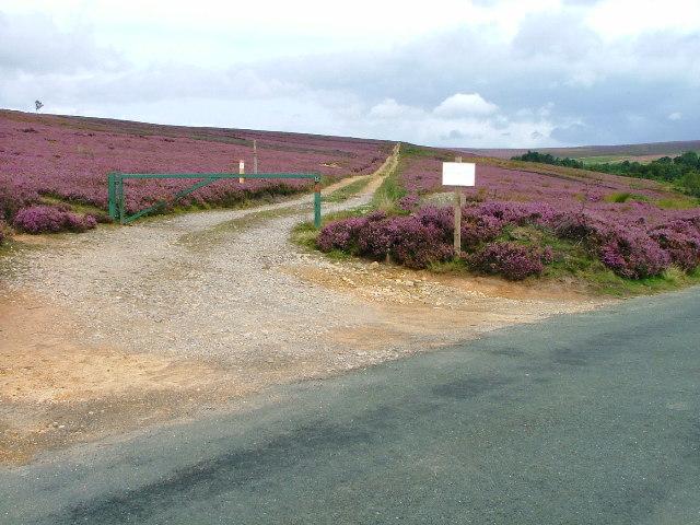 Private Track Bilsdale Moor