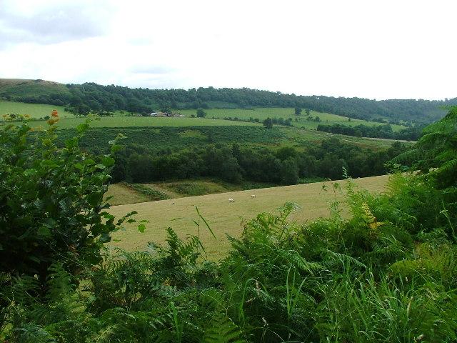 Farmland, Cowhouse Beck