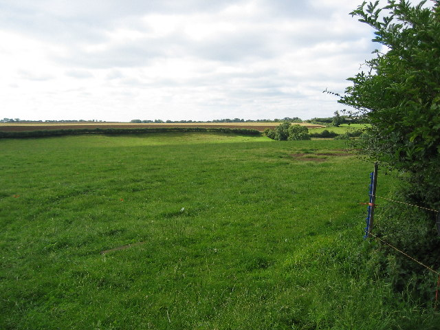 Fields near Uppingham