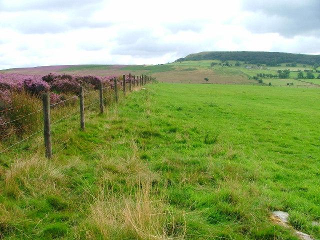 Fence, Lund Ridge