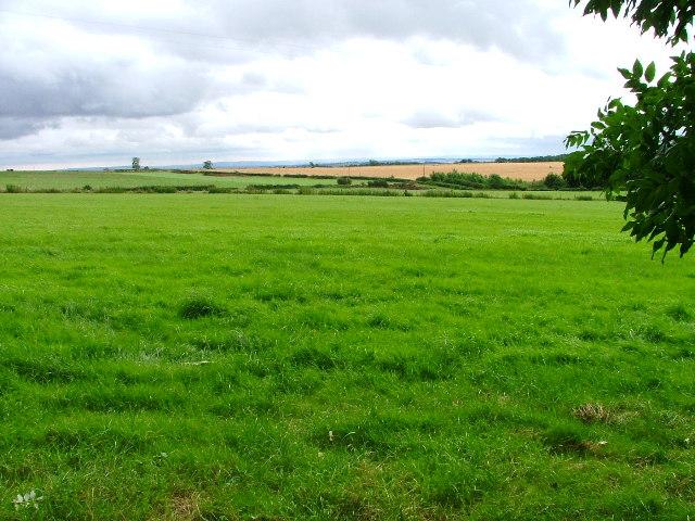 Farmland behind Rievaulx Terrace.