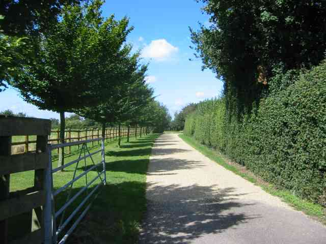 Driveway to Lady Bray Farm  Kennel Lane