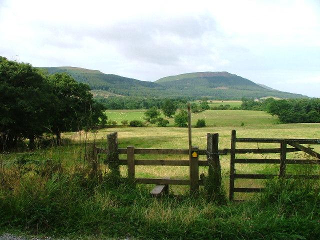 Public Footpath to Wood's Farm