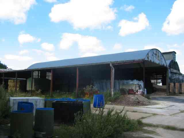 Dane Street Farm