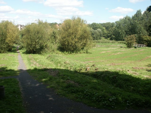 Toll's Meadow, Wymondham