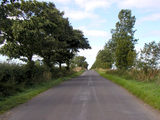The road to Owstwick