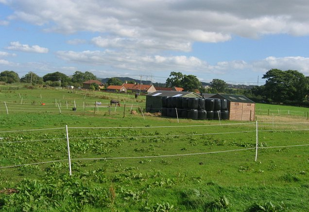 Horseyculture, Burnhouse.