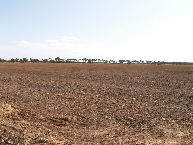 Field near Craigie