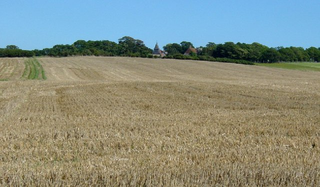 Wheat field between Milton Street and Wilmington