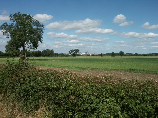Fields, Wymondham