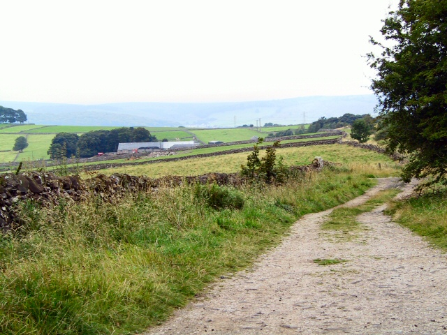 Green Lane to Daisymere Farm
