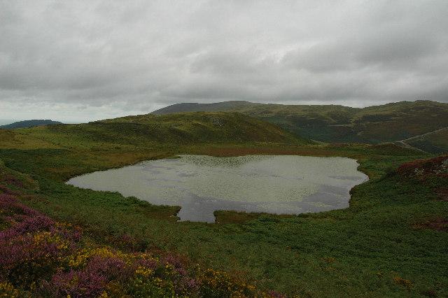 Llyn Barfog (Bearded Lake)
