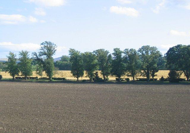 Farmland, Ratho Byres.