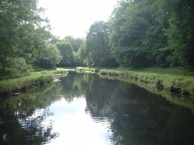 River Dun, near Dunbridge, Hampshire