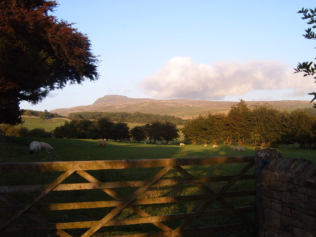 Ingleborough  from Thornton in  Lonsdale