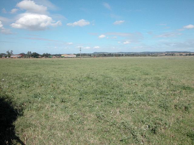 Grassland near Guilden Sutton