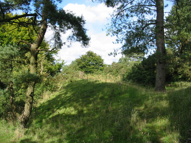 Penbury  Hill Fort Rampart