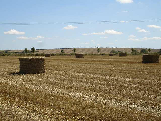 Fields between Hinxworth and Ashwell