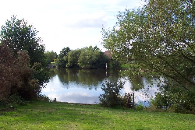 Goldsworth Park lake