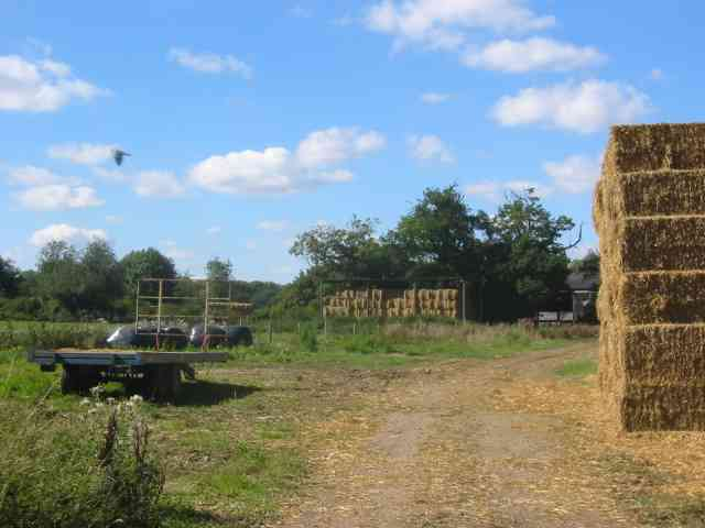 Stackyard with machinery at Easthall